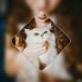 icon Picture Art