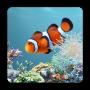 icon aniPet Aquarium LiveWallpaper