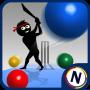 icon Googly Cricket